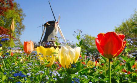 Traumurlaub in den Niederlanden