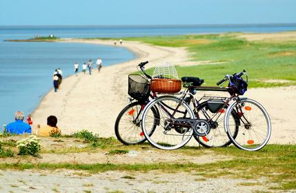 Ausflug an die Küste mit Fahrrädern