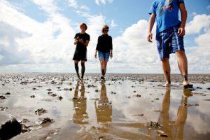 Der Artikel spornt an Urlaub auf den ostfriesischen Inseln zu machen.