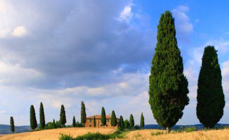 Ferienanlagen in der Toskana – im sonnigen Garten Italiens