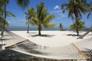 Eine Hängematte an einem Strand mit Palmen