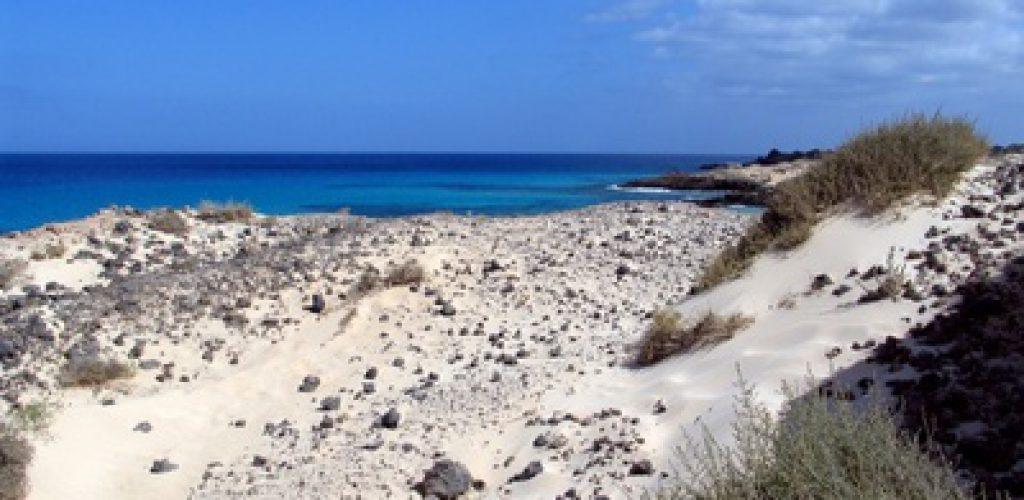Dem grauen Alltag entfliehen und den Sommerurlaub auf Fuerteventura verbringen