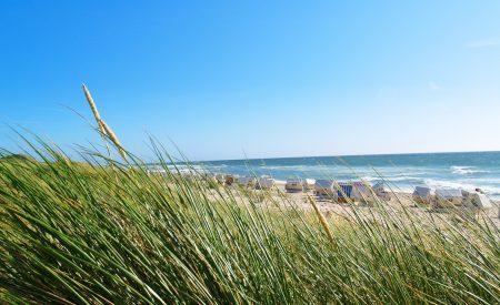 Entspannen und Genießen – Urlaub im Ostseebad Boltenhagen