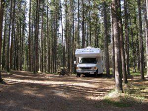 Ein Wohnmobil steht in einem Waldgebiet