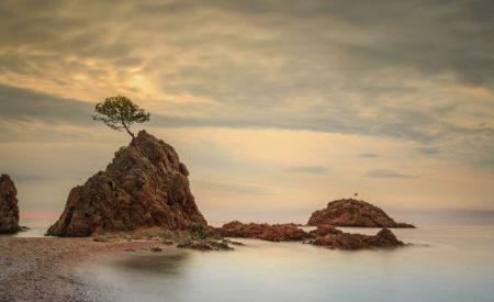 Die Katalonische Küste: Vier Küstenabschnitte mit Urlaubspotential