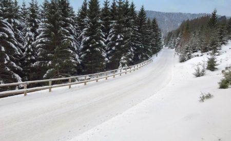 Winterzauber im Harz: Die schönsten Pisten für Rodler